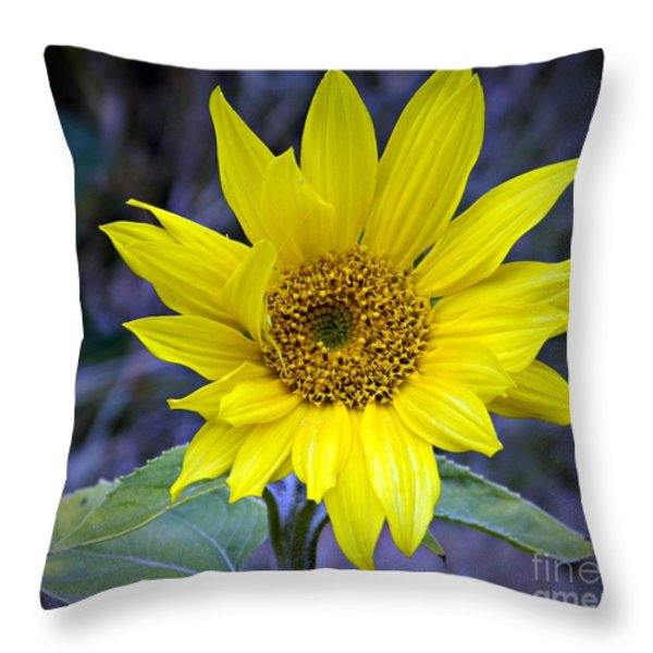 Hopeful Too Throw Pillow by Chalet Roome-Rigdon