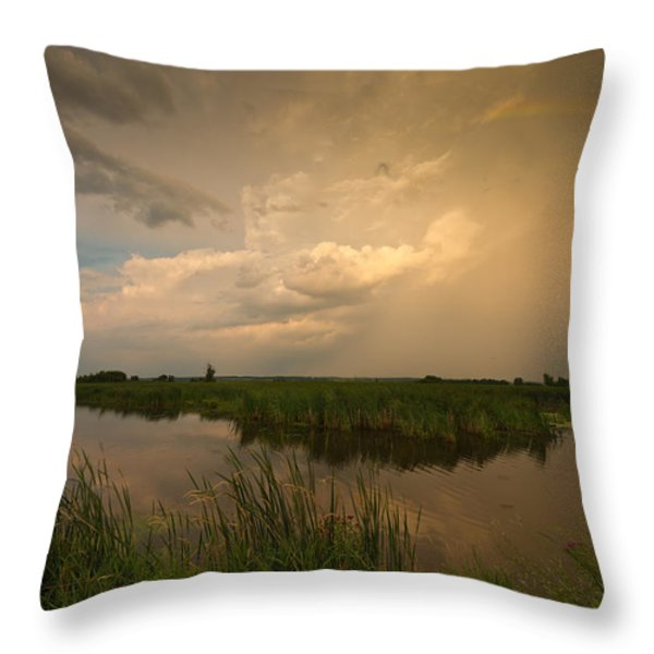 Horicon Marsh Storm Throw Pillow by Steve Gadomski