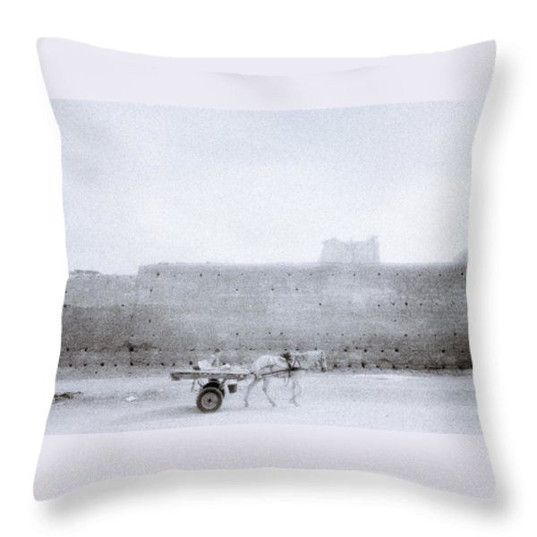 Horse And Cart Throw Pillow by Shaun Higson