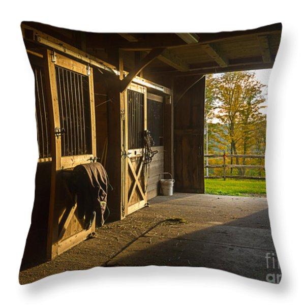 Horse Barn Sunset Throw Pillow by Edward Fielding