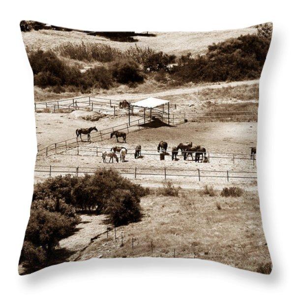 Horse Farm at Kourion Throw Pillow by John Rizzuto