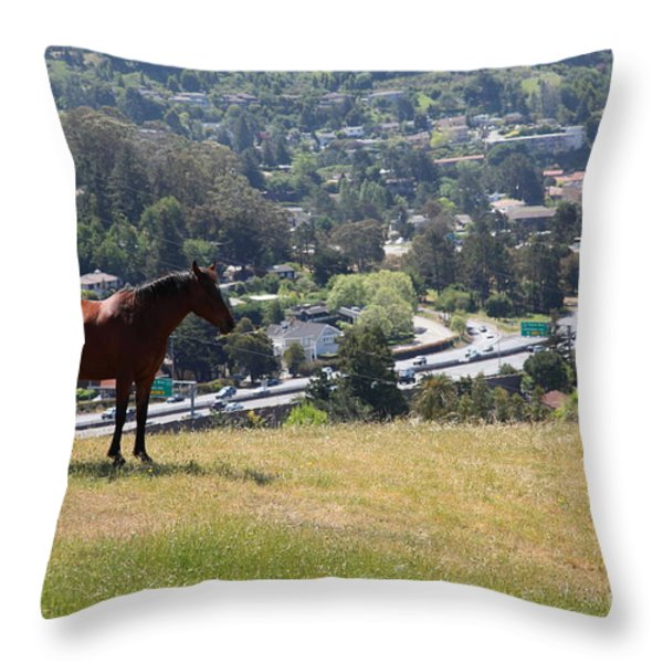 Horse Hill Mill Valley California 5d22663 Throw Pillow by Wingsdomain Art and Photography