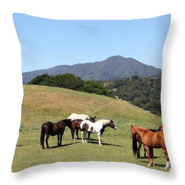 Horse Hill Mill Valley California 5D22672 Throw Pillow by Wingsdomain Art and Photography