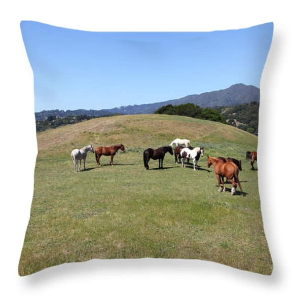 Horse Hill Mill Valley California 5D22673 Throw Pillow by Wingsdomain Art and Photography