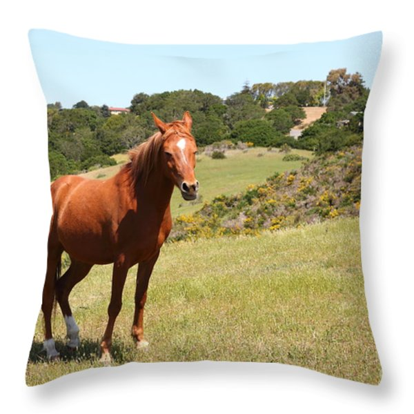Horse Hill Mill Valley California 5D22679 Throw Pillow by Wingsdomain Art and Photography