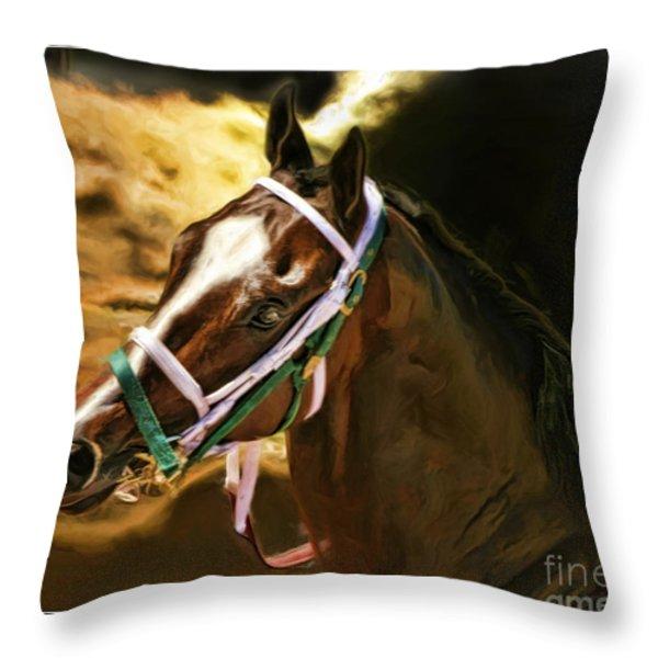 Horse Last Memories Throw Pillow by Blake Richards
