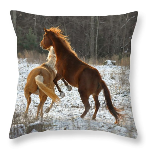Horses at Play - 10Dec5690b Throw Pillow by Paul Lyndon Phillips