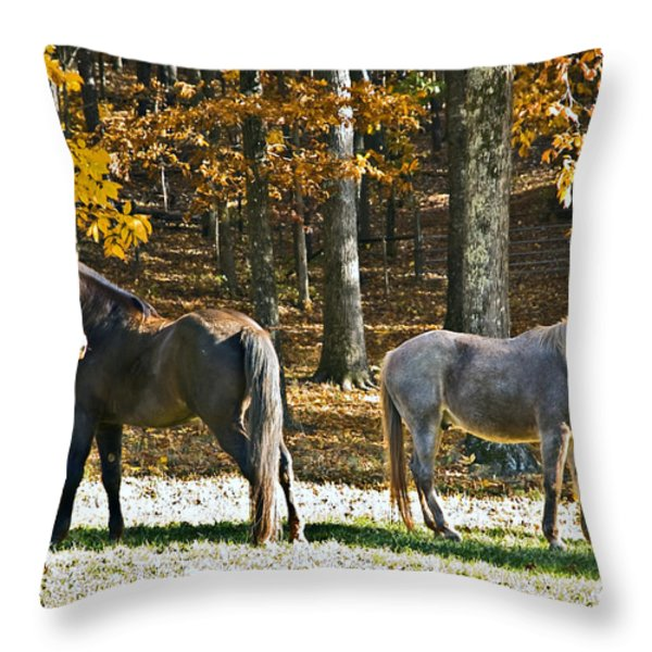 Horses in Autumn Pasture   Throw Pillow by Susan Leggett