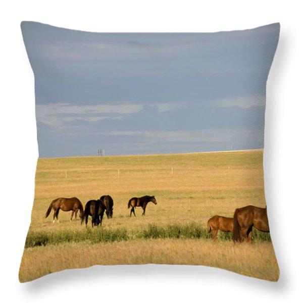 Horses In Saskatchewan Throw Pillow by Mark Newman