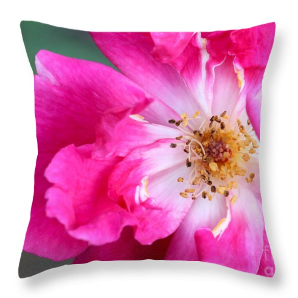 Hot Pink Rose Throw Pillow by Sabrina L Ryan