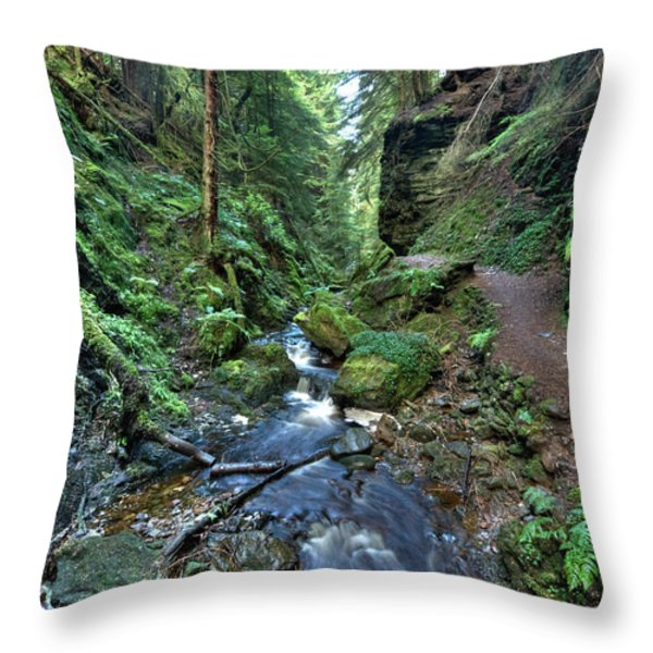 How green is my glen Throw Pillow by Gary Eason