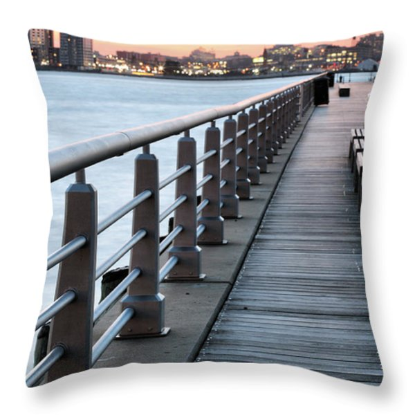 Hudson River Park Throw Pillow by JC Findley