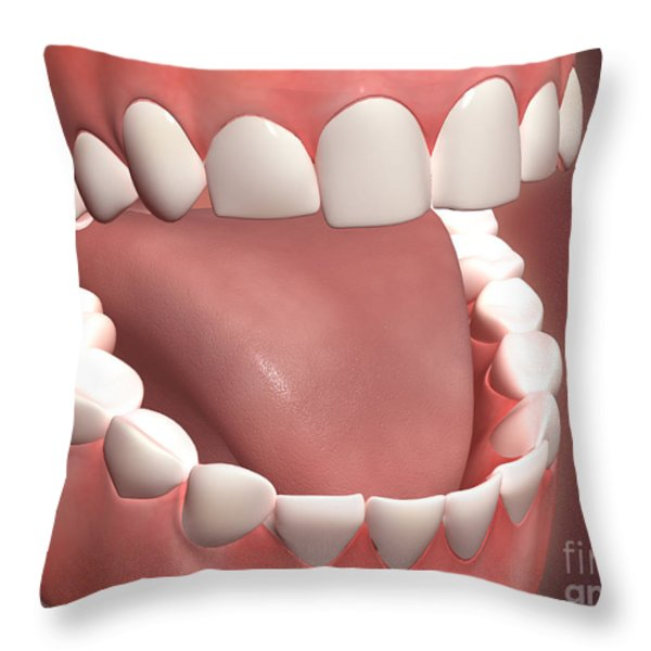 Human Mouth Open, Showing Teeth, Gums Throw Pillow by Stocktrek Images
