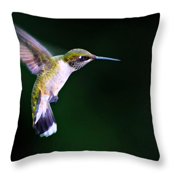 Hummer Ballet 2 Throw Pillow by Bill Caldwell -        ABeautifulSky Photography