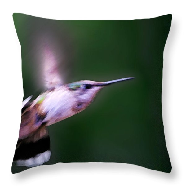 Hummer Ballet 4 Throw Pillow by Bill Caldwell -        ABeautifulSky Photography