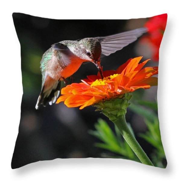 Hummingbird And Zinnia Throw Pillow by Steve Augustin