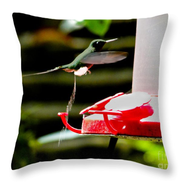 Hummingbird Business Throw Pillow by Al Bourassa