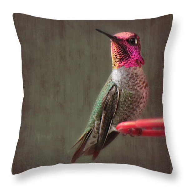 Hummingbird Flare Throw Pillow by Melanie Lankford Photography