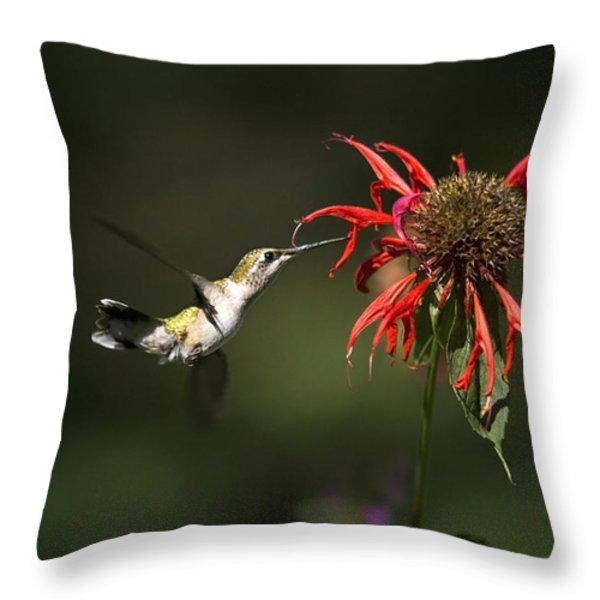 Hummingbird Garden Angel Throw Pillow by Christina Rollo