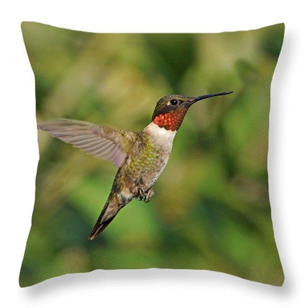 Hummingbird In Flight Throw Pillow by Sandy Keeton