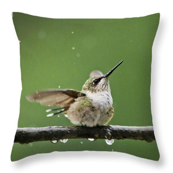 Hummingbird In The Rain Throw Pillow by Christina Rollo