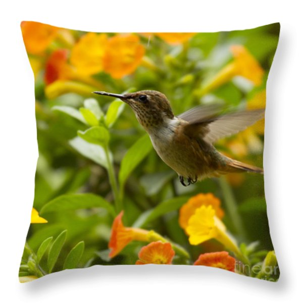 Hummingbird looking for food Throw Pillow by Heiko Koehrer-Wagner