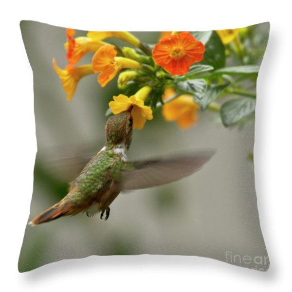Hummingbird sips Nectar Throw Pillow by Heiko Koehrer-Wagner