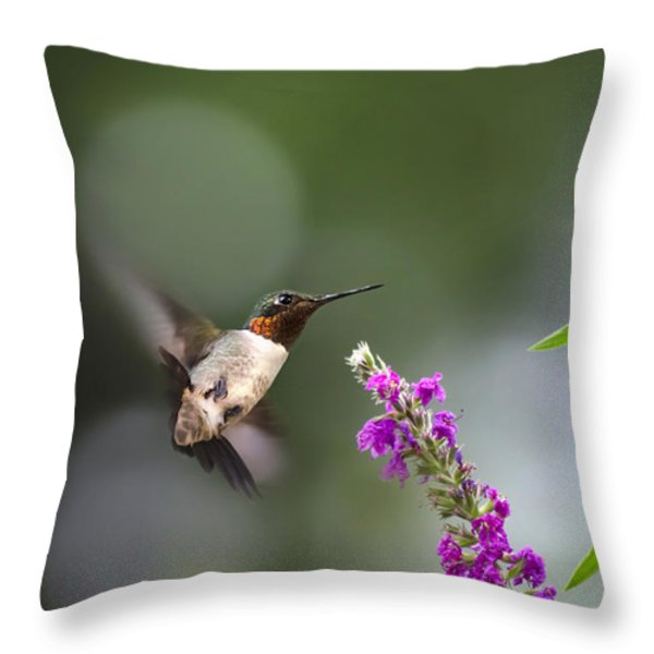 Hummingbird Somersault Throw Pillow by Christina Rollo
