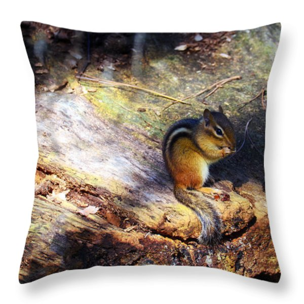Hungry Throw Pillow by Mark Papke