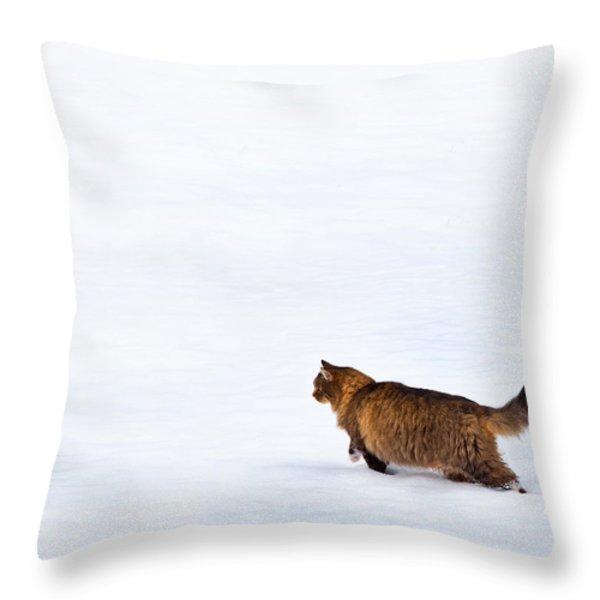 HUNTER AT WORK Throw Pillow by Theresa Tahara