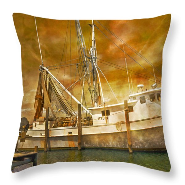 Hurricane Eve Throw Pillow by Betsy A  Cutler
