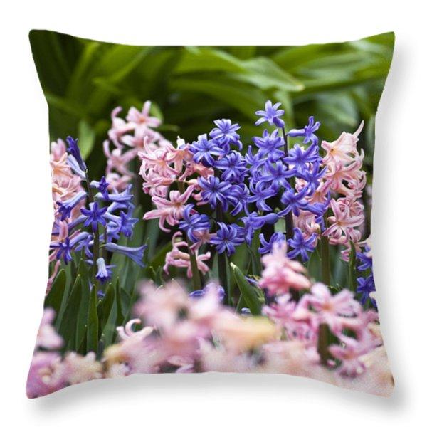 Hyacinth Garden Throw Pillow by Frank Tschakert