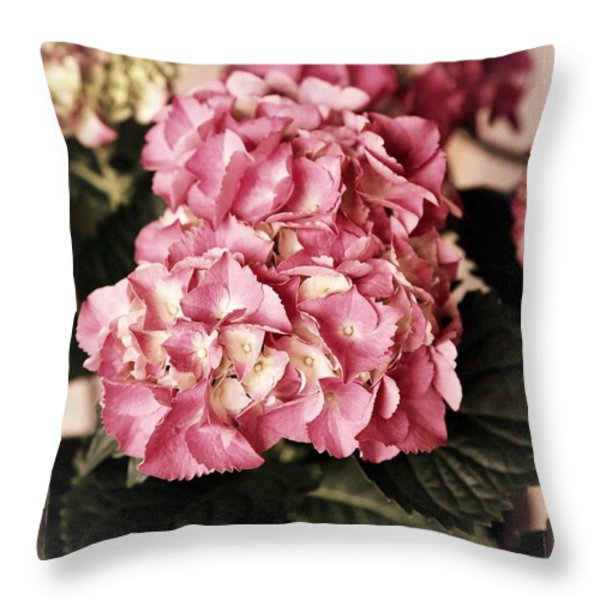 Hydrangea On The Veranda Throw Pillow by Carol Groenen