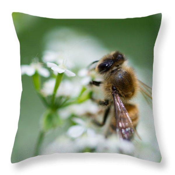 I am busy - Featured 3 Throw Pillow by Alexander Senin