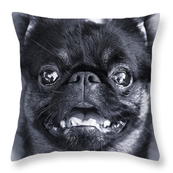 I Am Cute And I Know It Throw Pillow by Roger Wedegis