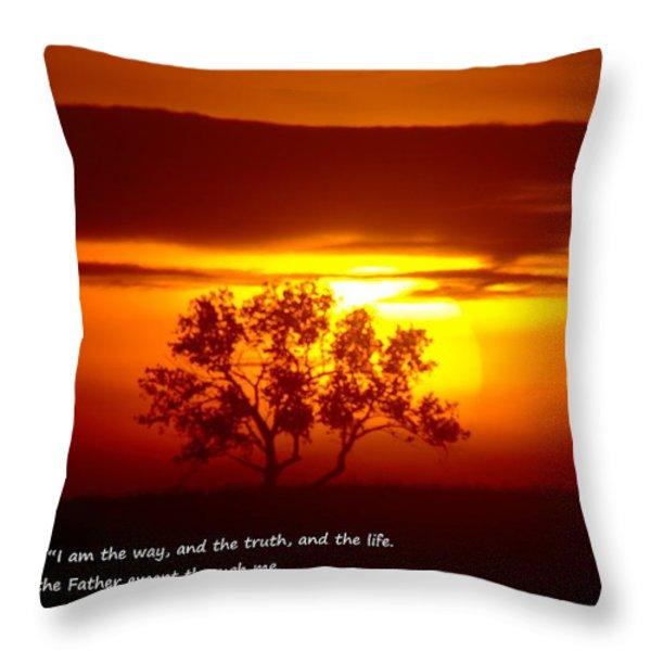 I AM THE WAY JOHN 14-6 Throw Pillow by Jeff  Swan