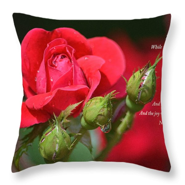 I Come To The Garden Alone Throw Pillow by Lena Wilhite