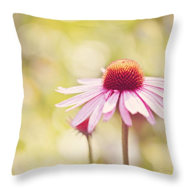 I Got Sunshine Throw Pillow by Reflective Moment Photography And Digital Art Images