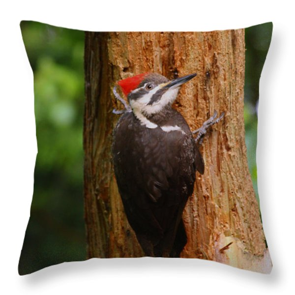 I Had To Give This Tree A Hug Throw Pillow by Kym Backland