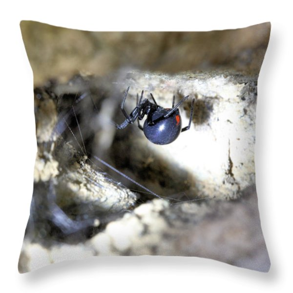 I like Big Butts Throw Pillow by JC Findley