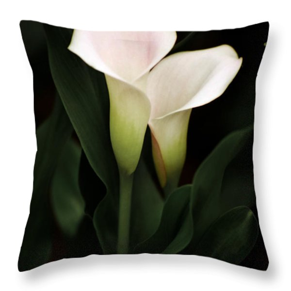 I Love You Throw Pillow by Penny Lisowski