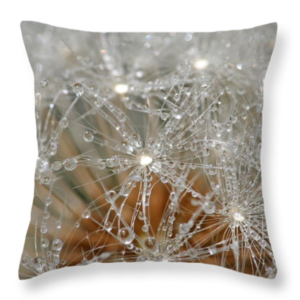 I Might've Gone to Seed But I Still Know How to Party Throw Pillow by Peggy Collins