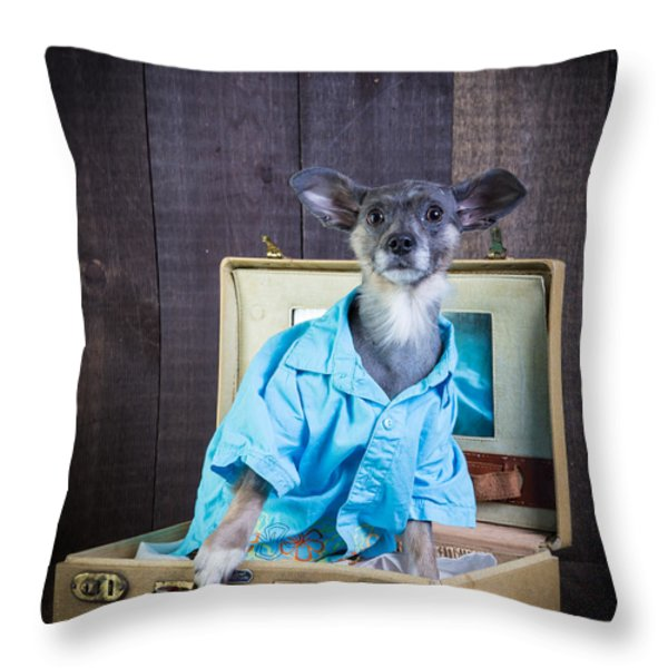 I Need A Vacation Throw Pillow by Edward Fielding
