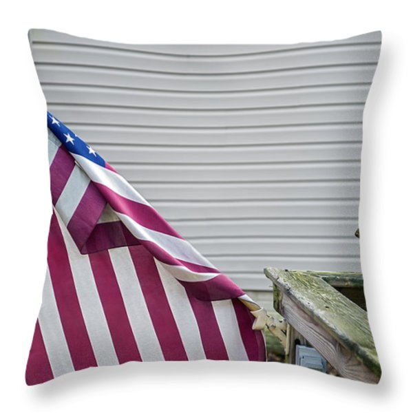 I Pledge Allegiance Throw Pillow by Brian Wallace