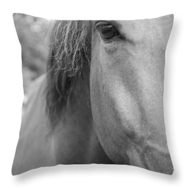 I See You Throw Pillow by Jennifer Lyon