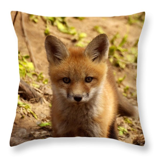 I See You Throw Pillow by Thomas Young
