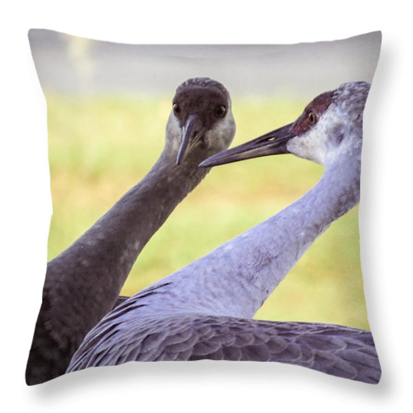 I See You Throw Pillow by Zina Stromberg
