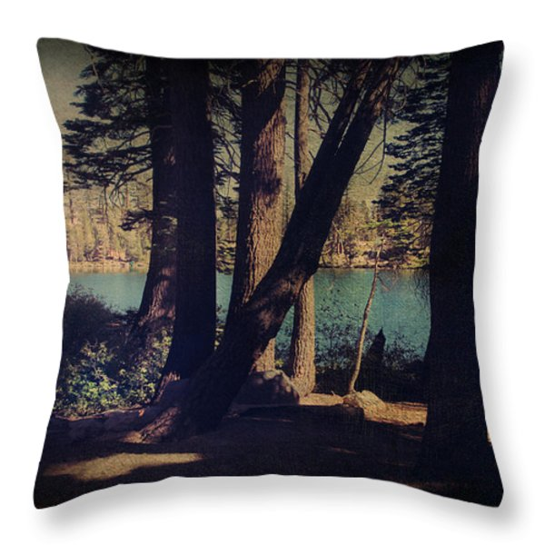 I Sit in the Shadows Throw Pillow by Laurie Search