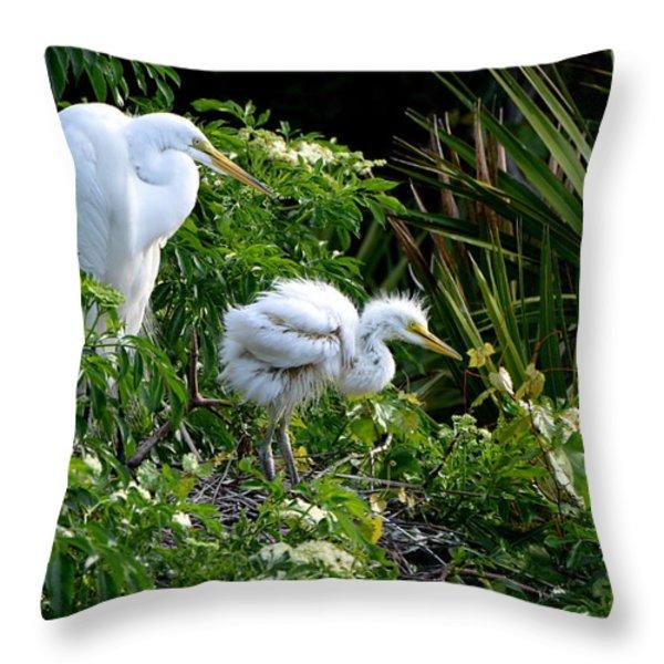 I Think I Can Throw Pillow by Jodi Terracina