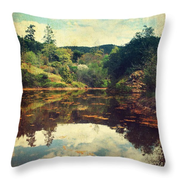 I Tried To Get To You Throw Pillow by Laurie Search
